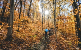 Ontdekking | Indian summer in Quebec #2: Lac-Beauport en Sentiers du Moulin